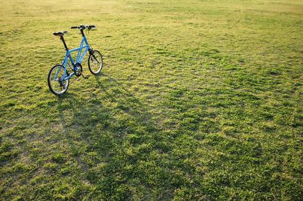 公園とタイレルFX