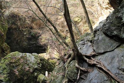 ネジレの滝へ。