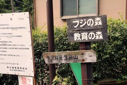 矢沢林道方面へ