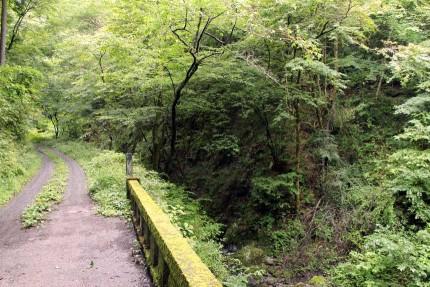 落合橋から左と正面を見た所です。