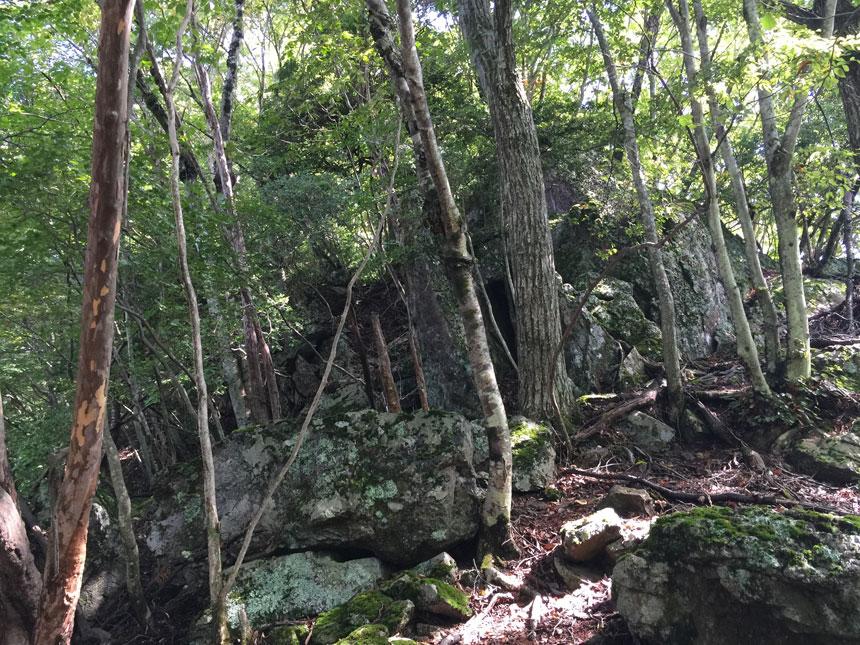 大岩の左を通過する