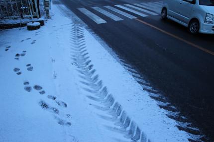 神戸岩入口バス停の様子 積雪