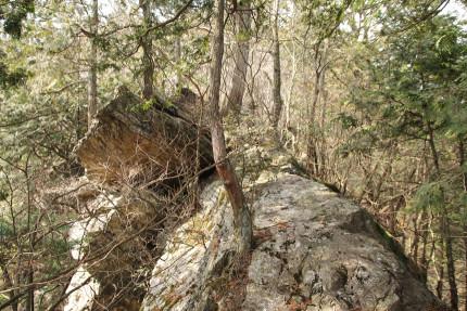 岩の痩せ尾根